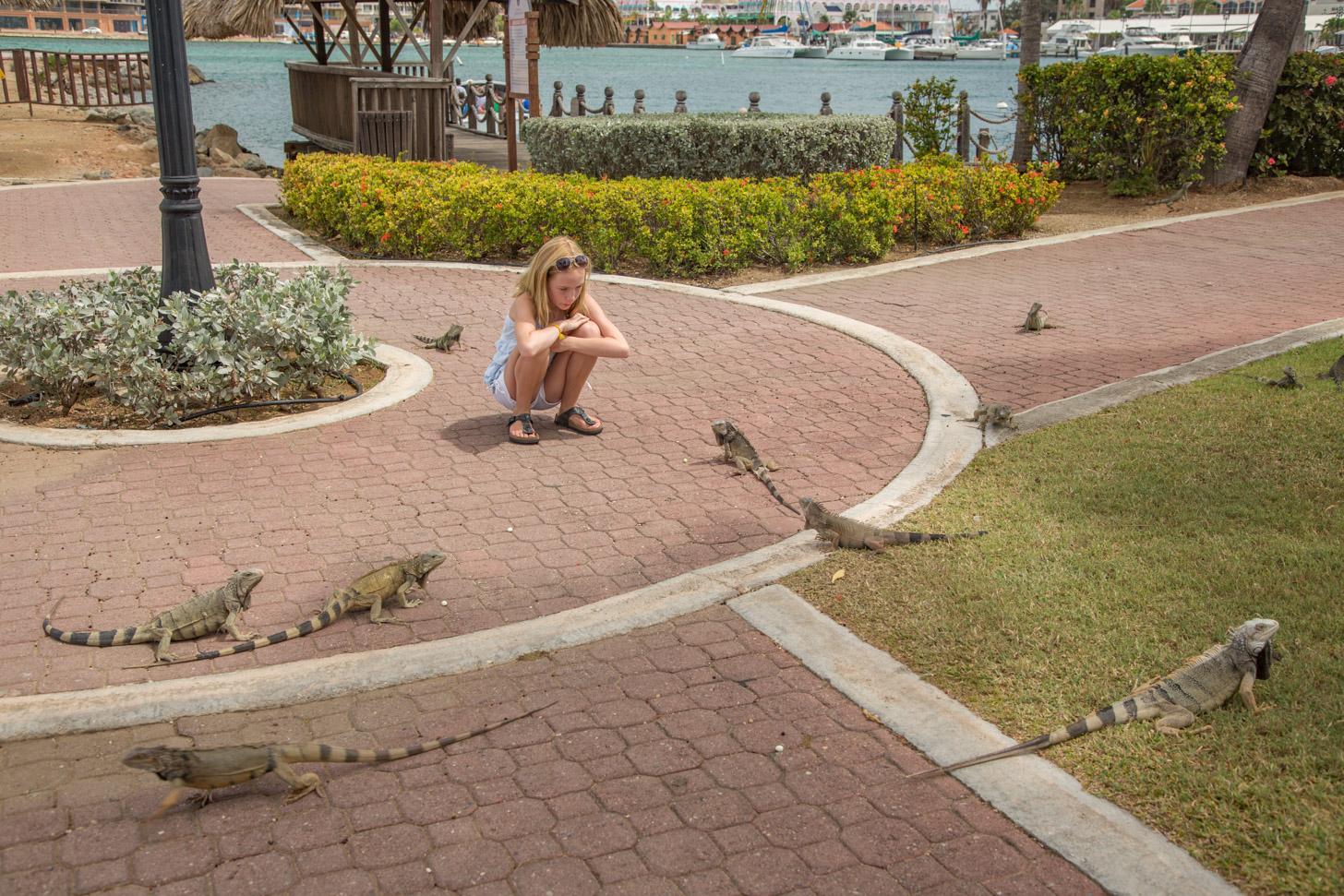 Meisje omringt door leguanen op Aruba
